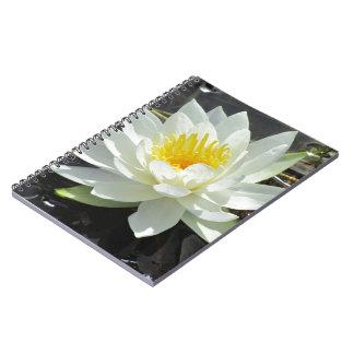 Cuaderno de la floración de Lilypad