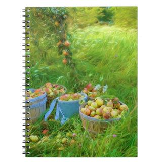 Cuaderno de la foto de la cosecha de la pera (80
