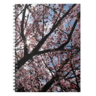 """Cuaderno de la foto de la """"flor de cerezo"""" (80"""