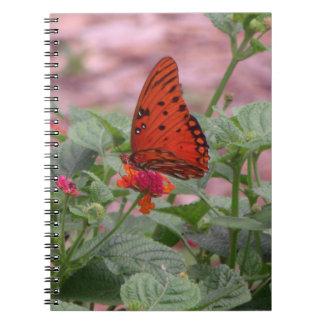 Cuaderno de la foto de la mariposa del Fritillary