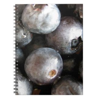Cuaderno de la foto de los arándanos