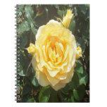 Cuaderno de la foto de los rosas amarillos