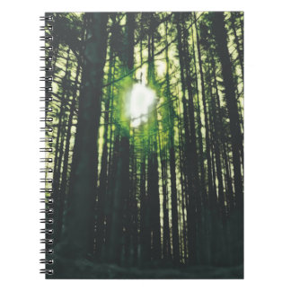 Cuaderno de la foto del bosque de Mirkwood (80