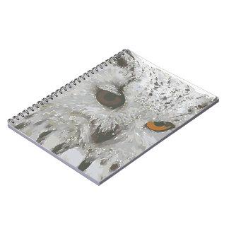 Cuaderno de la foto del búho