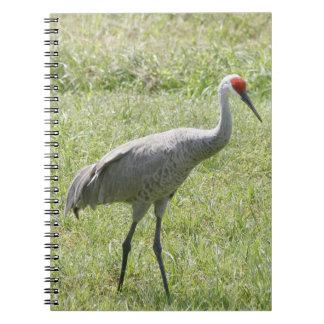 Cuaderno de la foto del espiral de la grúa de