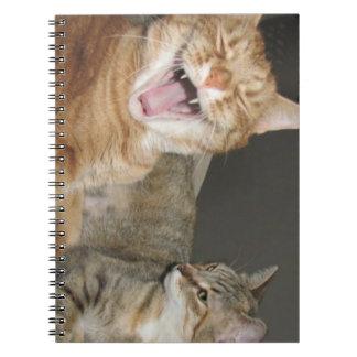 """Cuaderno de la foto """"del gato de risa"""" (80 páginas"""