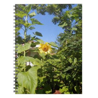 Cuaderno de la foto del GIRASOL de la CABAÑA