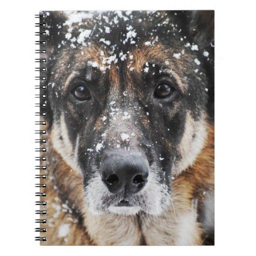 Cuaderno de la fotografía del pastor alemán de la