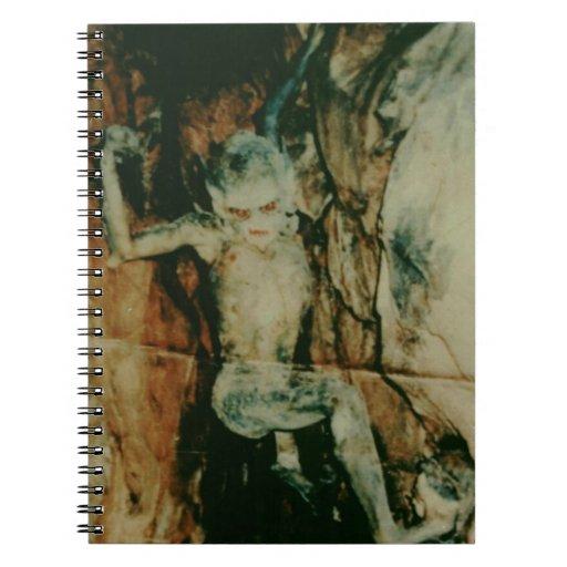 Cuaderno de la imagen del demonio