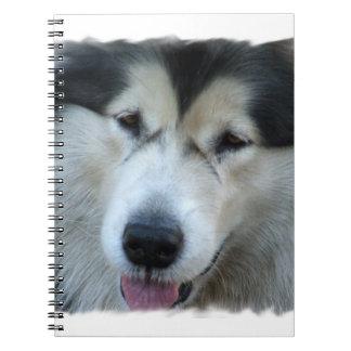 Cuaderno de la imagen del Malamute del lobo