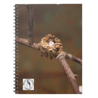Cuaderno de la jerarquía del colibrí