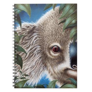 Cuaderno de la koala de los objetos curiosos