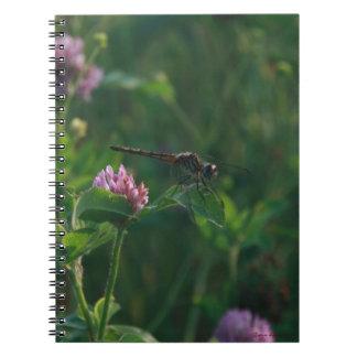 Cuaderno de la libélula