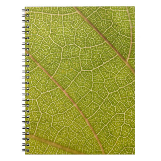 Cuaderno de la macro de la hoja