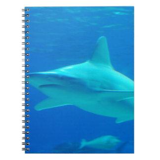 Cuaderno de la natación del tiburón