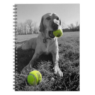 Cuaderno de la pelota de tenis del perro