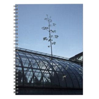 Cuaderno de la planta de siglo