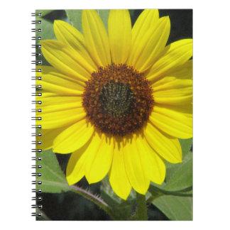 Cuaderno de la planta del girasol
