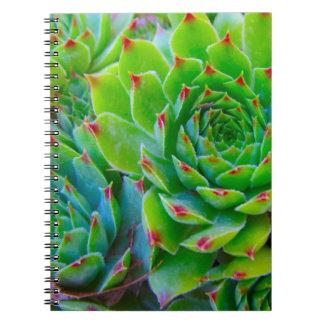 Cuaderno de la planta verde