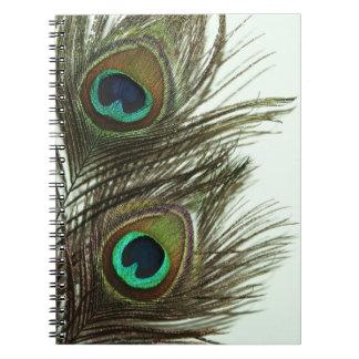 Cuaderno de la pluma del pavo real