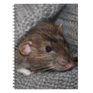 Cuaderno de la rata