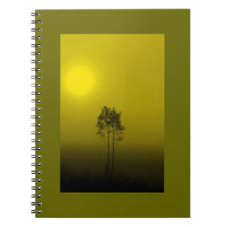 Cuaderno de la salida del sol del olivo