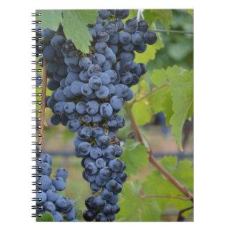 Cuaderno de la uva o diario del vino