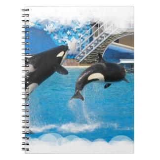 Cuaderno de las ballenas de la orca