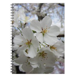 Cuaderno de las flores de cerezo 2