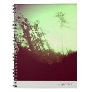 Cuaderno de las ilustraciones - bosque gritador