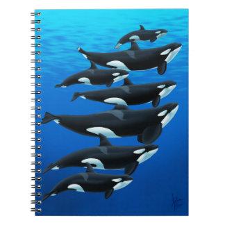 Cuaderno de las orcas de Tenerife