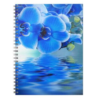 Cuaderno de las orquídeas azules