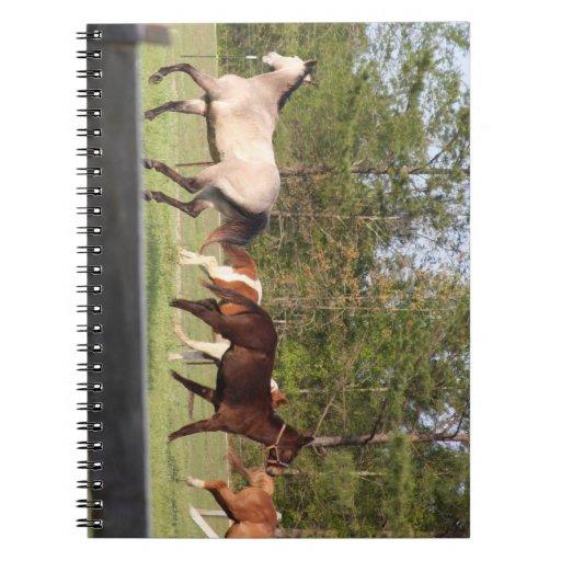Cuaderno de los caballos
