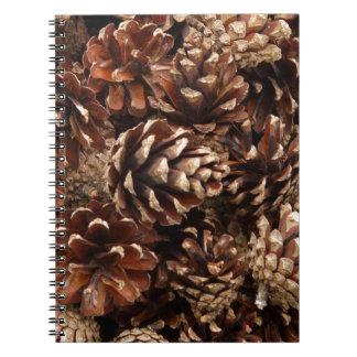 Cuaderno de los conos del pino