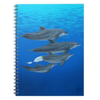 Cuaderno de los delfínes de Clearwater