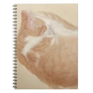 Cuaderno de los gatos 26 del maullido