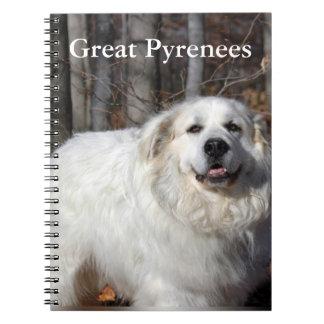Cuaderno de los grandes Pirineos