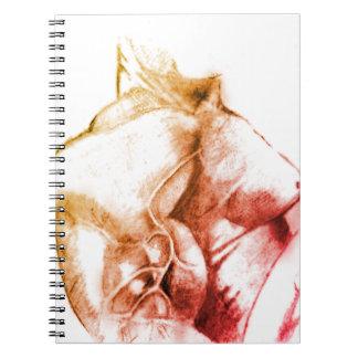 Cuaderno de los músculos