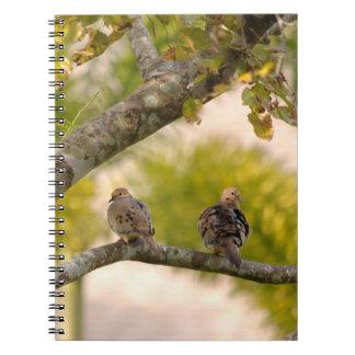 Cuaderno de los pájaros de las palomas de luto