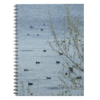 Cuaderno de los pájaros del lago