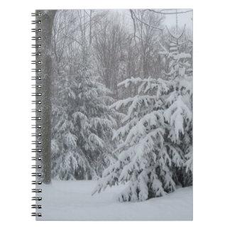 Cuaderno de los pinos del invierno