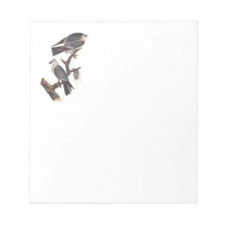Cuaderno de notas con Falcons Blocs De Notas