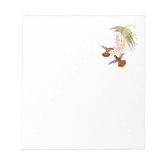 Cuaderno de notas con los colibríes bloc