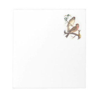 Cuaderno de notas con los pájaros hermosos bloc
