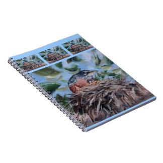 Cuaderno de protección del petirrojo