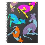 Cuaderno de Roo