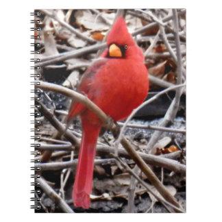 """Cuaderno de """"señor Cardinal"""""""