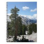 Cuaderno de Yosemite del punto de Olmsted