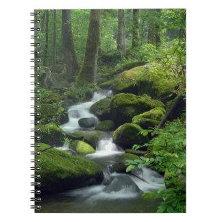 Cuaderno del arroyo del bosque del verano