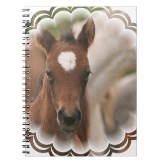 Cuaderno del bebé del caballo